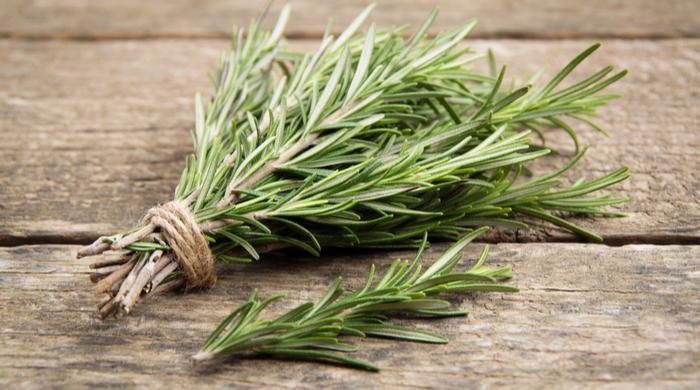 Ervas Aromáticas- alecrim, chá, tempeiro saiba como usar